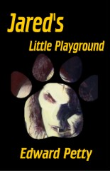 Jared's Little PlaygroundEdward Petty cover image