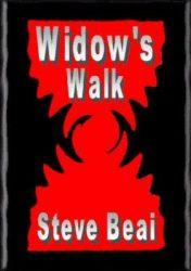 widows-walk-by-steve-beai poster