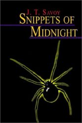 snippets-of-midnight-by-j-t-savoy cover